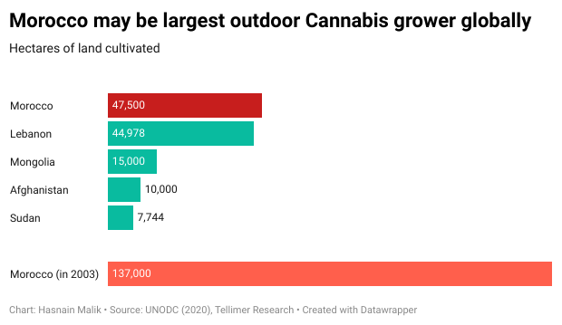 Morocco may be largest outdoor Cannabis grower globally