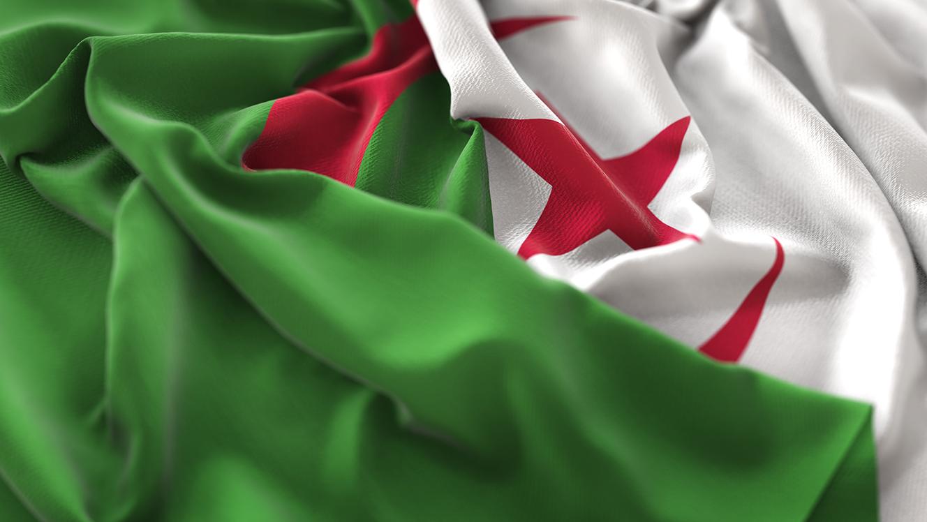 Algeria: Spillover risks after split in domestic elite and protests