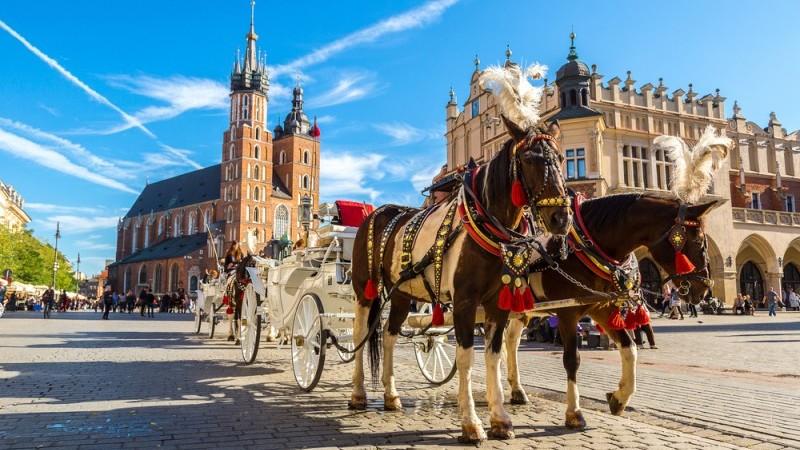 Polish retail sales rebound is starting to slow