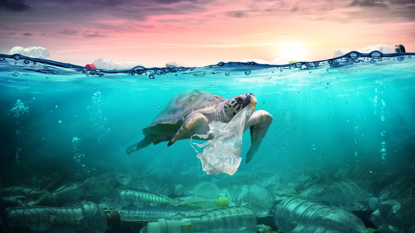 The 'E' in ESG: 4 charts on plastic waste in emerging markets