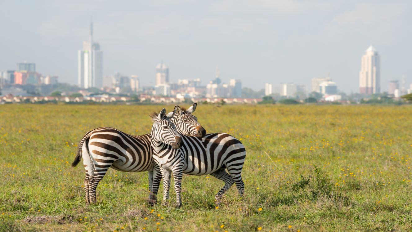 Kenya banks: Four ways M&A could transform the sector