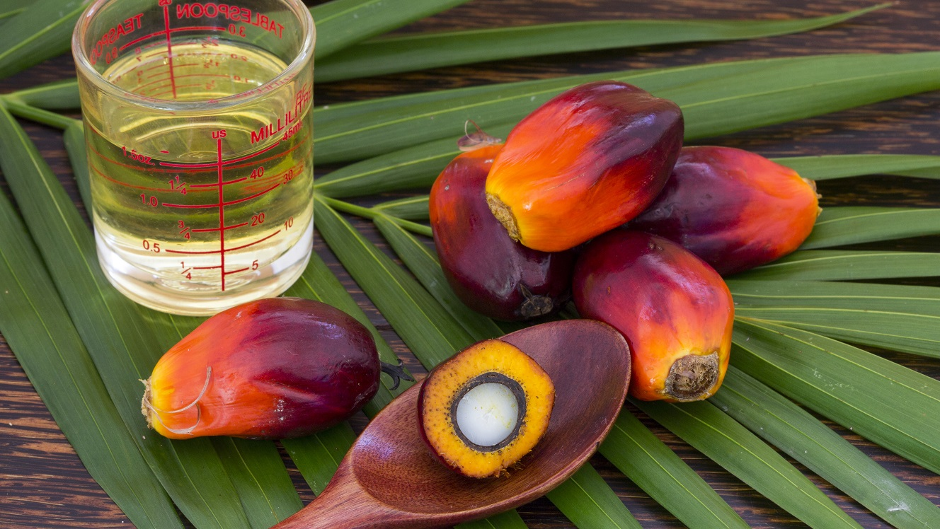 Three palm oil producers that adhere to ESG and are good value