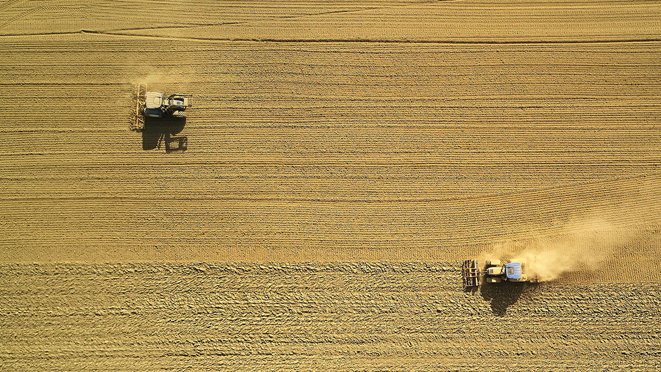 Commodity food price spike: The high-risk countries