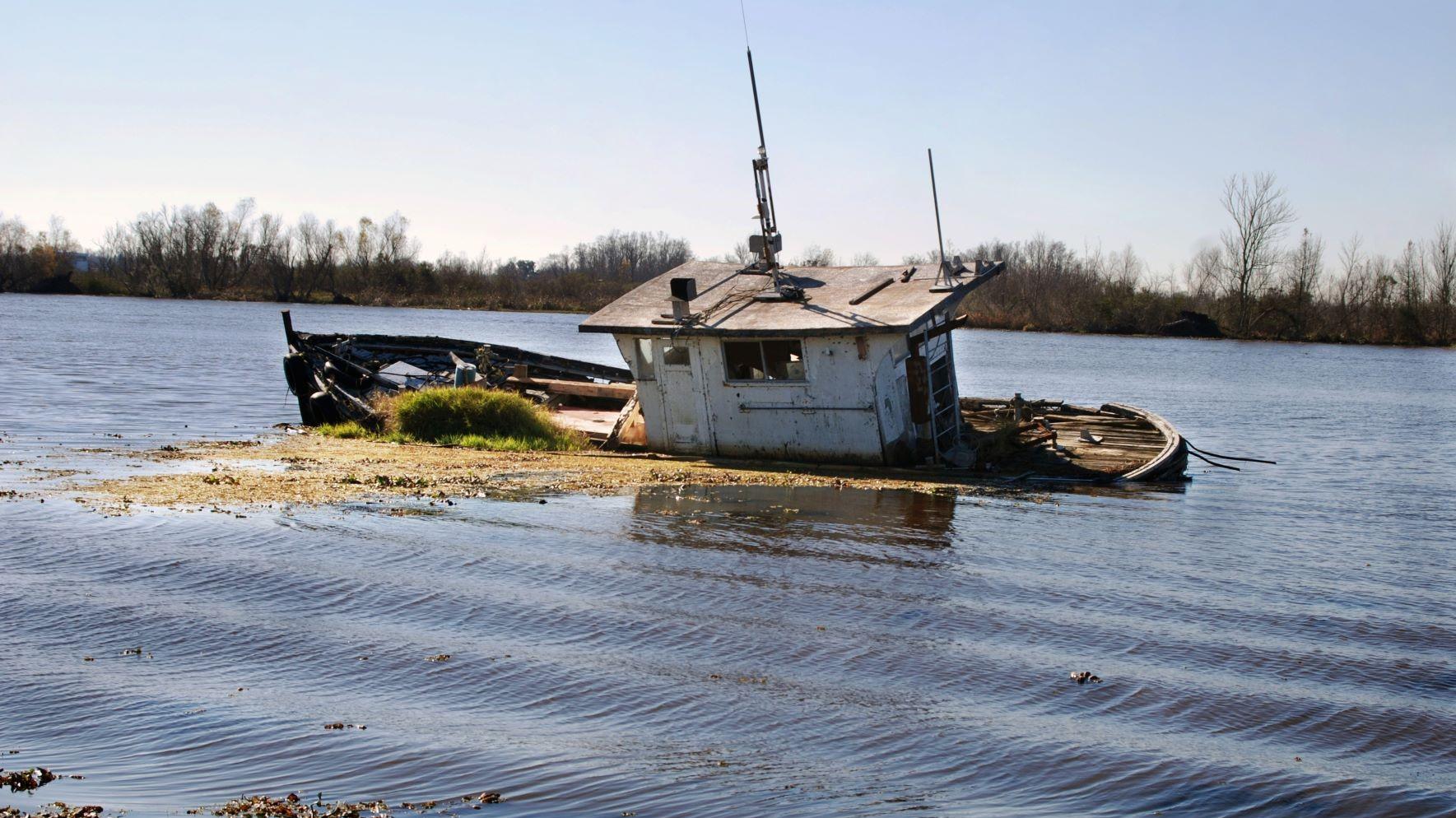 Hurricane Ida may be a boon for Asian shrimp producers