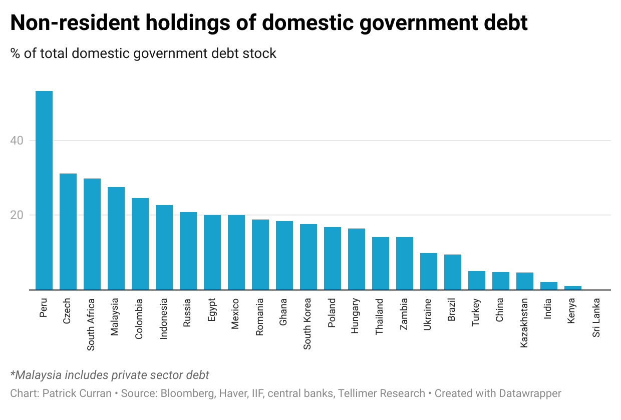 Non-resident holdings of domestic government debt